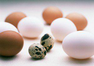 Яйца улучшают память