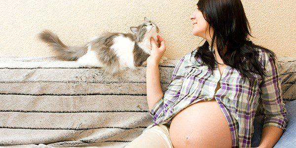 Опасности для беременных