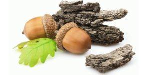Донник лекарственный лечебные свойства и противопоказания. Рецепты чая