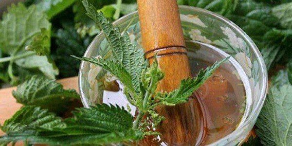 Медово-крапивная смесь