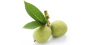 Зеленый плоды